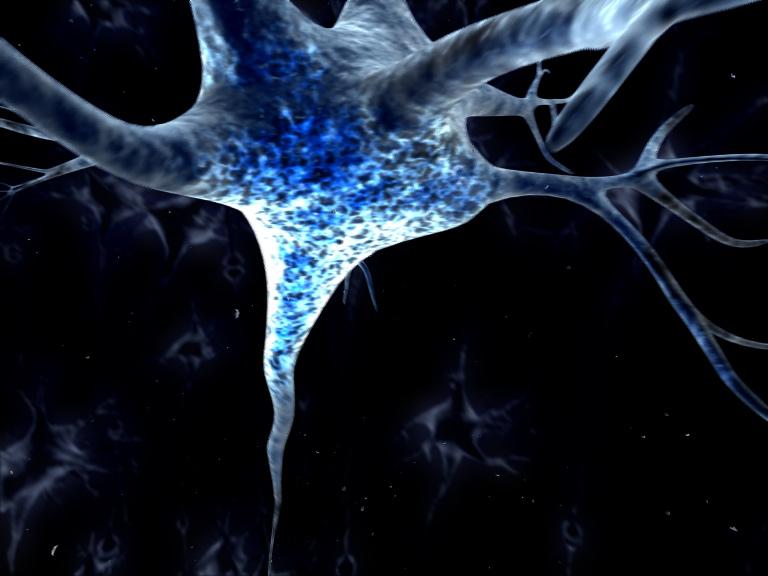 I Neuroni Specchio Per Capire Le Emozioni Mindcheats