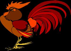 Il segreto del gallo: come alzarsi presto ed essere subito al 100%